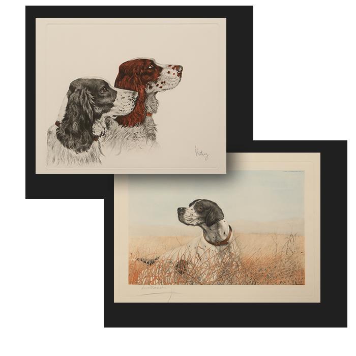 Gallery Stampe Antiche di Animali